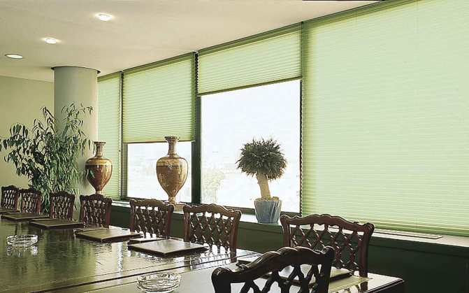 Celular sala verde